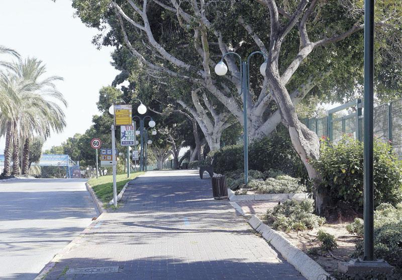רחוב בן יהודה. צילום: עזרא לוי