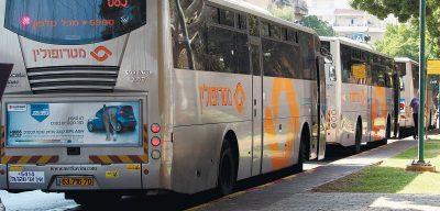 אוטובוסים של מטרופולין. צילום עזרא לוי