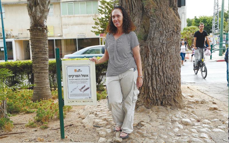 שרונה לימן. צילום עזרא לוי