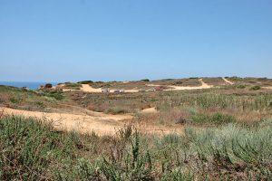 גן לאומי חוף השרון. צילום עזרא לוי