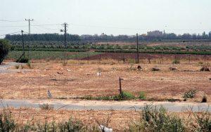 השטחים החקלאים במושב ירחיב. צילום זאב שטרן
