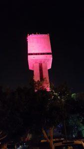 מגדל המים בוורוד. צילום גור דותן