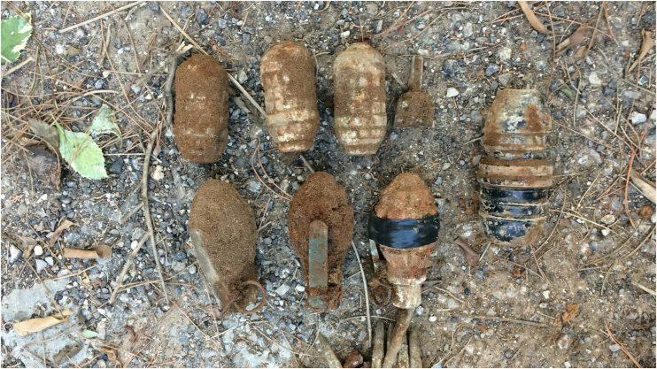 הרימונים שנמצאו ברחוב הרמה בכפר סבא