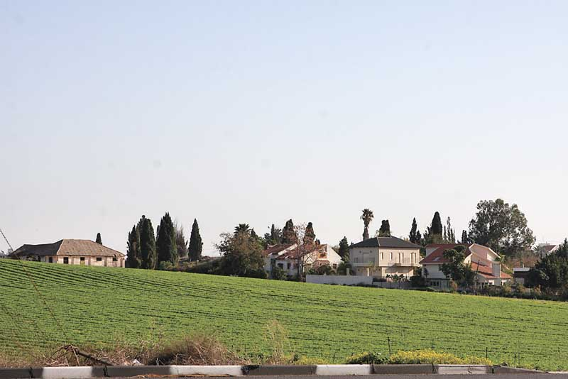השטח מצפון לבן יהודה. צילום עזרא לוי
