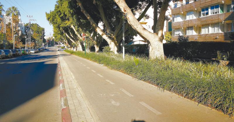 שביל אופניים ברחוב דב הוז