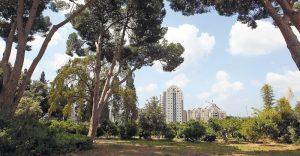 גן מנשה צילום עזרא לוי
