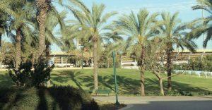 פארק עירוני כפר סבא צילום עזרא לוי
