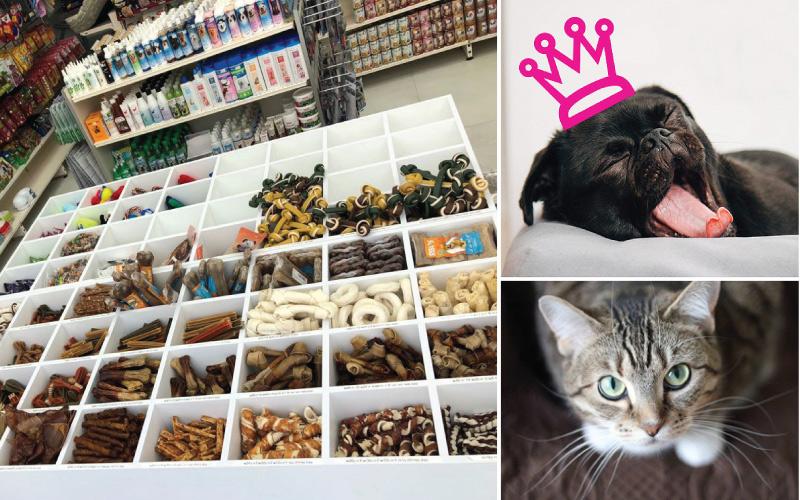 Animalove חנות מזון לבעלי חיים בכפר סבא. צילום עצמי