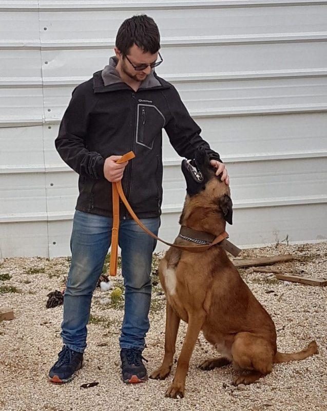 אוראל לוינשטיין: ניתוב הכלב להתנהגות חיובית (צילום עצמי)