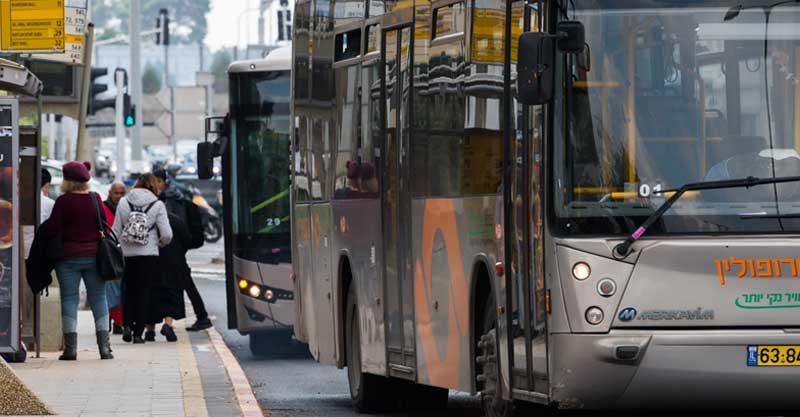 אוטובוסים של מטרופולין. צילום רגב כלף